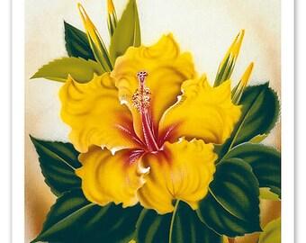 Hawaiian Yellow Hibiscus