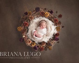 Digital newborn pinecone prop