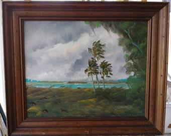 Original oil Painting Florida Landscape Art lake okeechobee Hurricane Irma 16x20 framed
