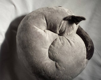 Jasmine, a soft sculpture of a Blue Point Siamese cat that's sleeping. A silky art doll for everyone.