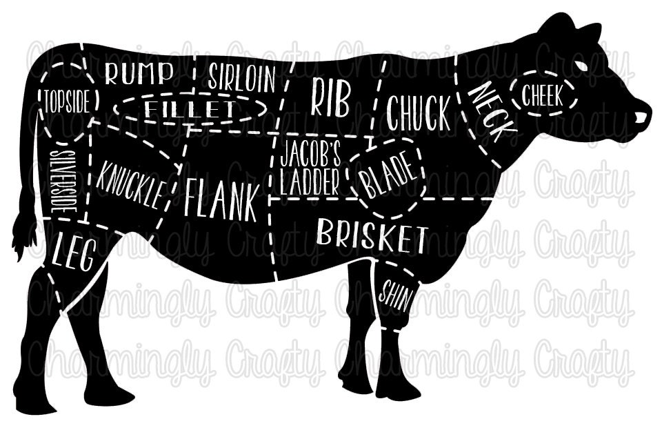 cow meat chart aksuy q eye co Cow Intestines Diagram beef cow meat cut chart svg png studio cuttable quote for