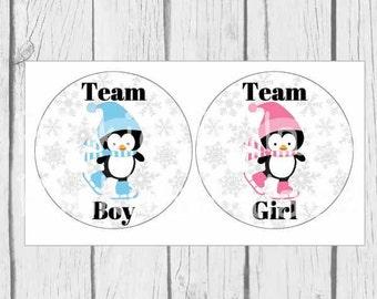 Gender Reveal Stickers, Envelope Seals, Ice Skating Penguins, Team Boy, Team Girl, Favor Stickers, SES415