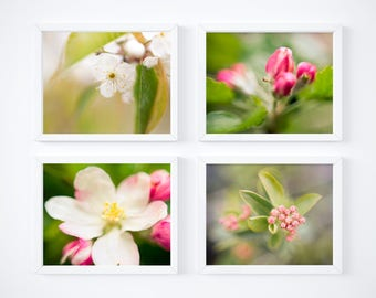 One Free! - Floral print set - Nature photography prints - Abstract wall decor - Matching art set - Photo prints - Botanical art - Large art