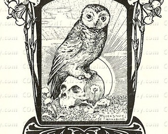 Owl and Skull - German - Vintage Bookplate - black and white
