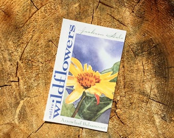 Arrowleaf Balsamroot Wyoming Wildflower Seeds