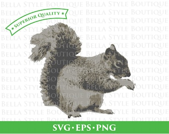 Squirrel svg png eps cut file