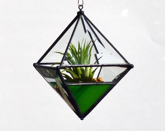 Pyramid Beveled Glass Orb Air Plant Planter with Variegated Yellow-Green Accent.