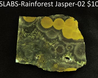 SLABS Rainforest Jasper