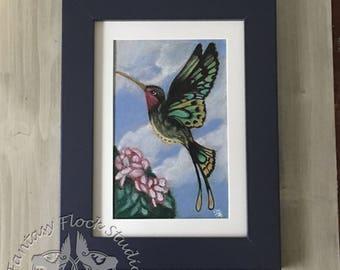 Cairns Birdwing Hummingfly