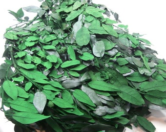 Preserved Holly,Christmas Holly Leaves,Preserved Ilex Leaves, Green leaf, Preserved leaf for craft, Dried Flowers, Dried Leaves. Wheat Bunch