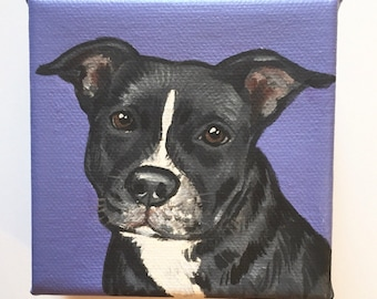"Custom Pet Portrait / Custom Dog Portrait /Custom Portrait -1 Pet Close-Up Solid background(4x4x1.5"") Gallery Style"