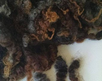 Gotland Wool -Doll Hair - Coopworth - Locks - Wool Locks - Spinning Fiber - Washed - Wool - Natural - Felting - Fleece - Local Organic Wool