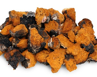 1 LB Chaga Small Chunks Chaga Mushroom Tea Wild Harvested Dried Ready to Brew (16 oz)