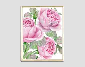 Pink roses watercolor print paint printable flowers print floral wall art print decor room home kitchen download digital poster botanical