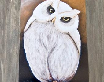 Owl/Curious Owl/Print