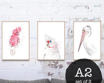 NEW set of 3 (A2) Australian Bird art prints - Giclee prints - Trending art
