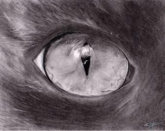 Cat's Eye (Original)