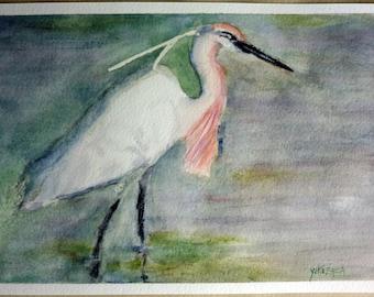 watercolor an egret, bird