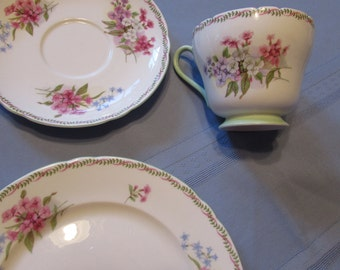Shelley Stocks Cup Saucer and 8 Inch Luncheon Plate : luncheon plates with cup holder - pezcame.com