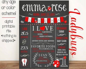 First Birthday Ladybug Chalkboard like Poster Digital/Printable - (any age or colors!)