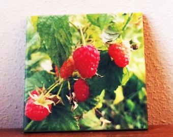 Raspberries! decorative ceramic tile, trivet, coaster, kitchen decor, gift for her | wall art, Christmas gift, foodie gift