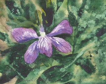 Rhode Island Violet, Watercolor Original, State Flower, Green, Purple