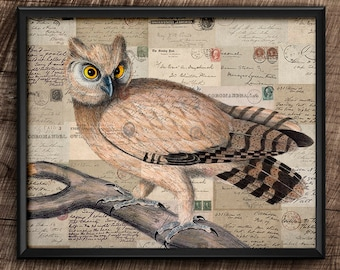 Owl · 8x10 · Instant Download · Vintage · Birds ·  Collage · Wall · Printable · Digital File #44