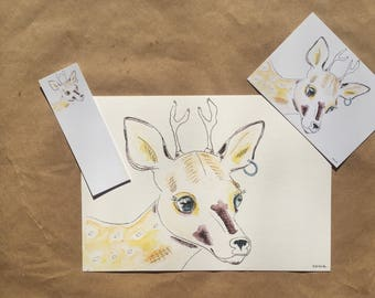 Deery Print Pack Set