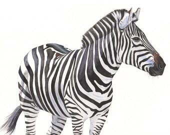 Zebra Painting  - Print of watercolor painting 2014 - A4 print - zebra art - zebra print - archival reproduction