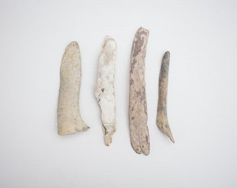 4x BEACH BONE PIECES, found bones, surf tumbled, ocean worn, reclaimed salvage, natural materials, jewellery making, carving, cruelty free