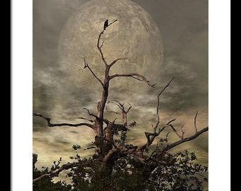 Crow Tree Framed Print