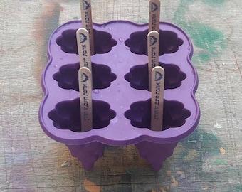 Preparation kit for popsicles
