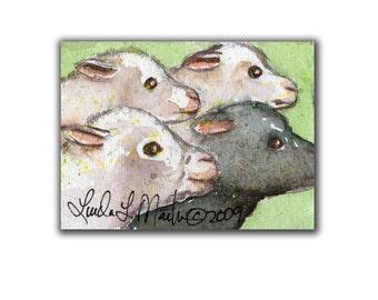 Sheep Stampede Lamb Artwork Miniature  Easter  llmartin Original ACEO  Watercolor Spring