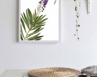 Fireweed, Herbarium Art Print, Pressed Plant, Fireweed Botanical Print, Montana Plant Art Print, Dried Flower, Purple Flower, Alaska Gift