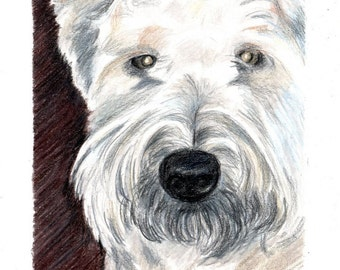 Custom Dog Pet Portrait 4x6 Pair Colored Pencil