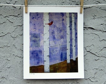 Bird Art Cardinal Birch Trees Fine Art  Print 8 x 10