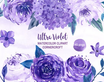 Watercolor Clipart Ultra Violet,  purple flower, rose, peony for instant download
