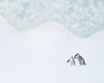 Animal Art. Fine Art Photography. Whimsical. Charming. Penguins. Winter Scene. Conceptual. Children Decor. Home or Office Decor.