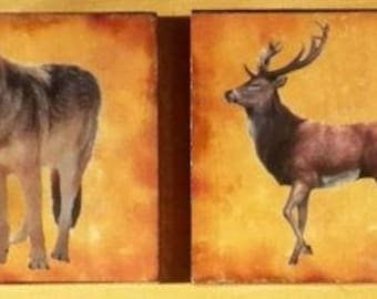Forest Animal #2 Coasters