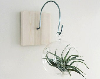 Wall Mount with Hook // Unique Wall Decor // Handmade Terrarium Holder, tillandsia, home decor, plant holder, living home decor, gift