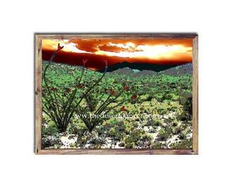 Printable Southwestern Western Desert Ocotillos Cactus Landscape Digital Photo Fine Art Print Painting Decor Instant Download