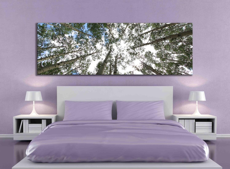 big aspen tree photograph large panoramic canvas print nature. Black Bedroom Furniture Sets. Home Design Ideas