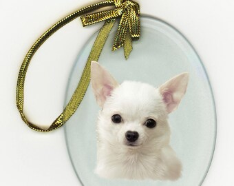 Chihuahua White Long Coat Suncatcher Ornament Oval Beveled Glass DOG