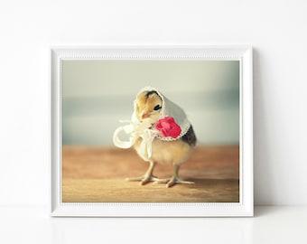 Baby Animal Print Chicks in Hats Photograph 8x10 Nursery Decor Cute Art