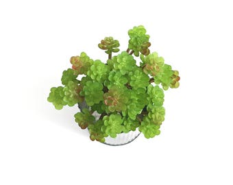 Faux Succulents, Green Sedum Spray Pick, Green + Burgundy Highlights, Artificial Hen & Chicks, Small Fillers, DIY Floral Arranging Supply
