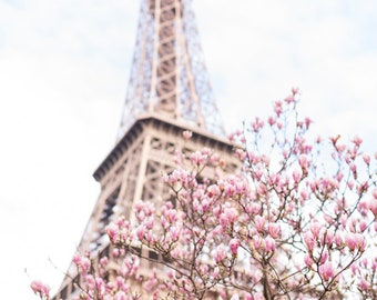 Paris Photography -  Magnolias at the Eiffel Tower, Spring in Paris, Travel Fine Art Photograph, Large Wall Art