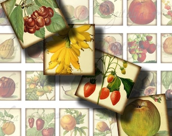 A Fruit A Day (1) Squares 1x1 or other sizes available glass pendant, scrabble tile - Buy 3 Get 1 Extra Free - Digital Collage Sheet