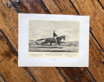c. 1952 - HORSE PRINT -  original vintage lithograph - Currier & Ives print - celebrated horse Dexter - race horse - horse racing - Derby
