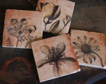 Sepia Botanical stone coaster set