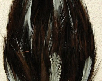 Brown and Beige Hackle Feather Pad